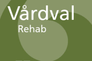 https://www.mpfysio.se/content/uploads/2018/08/20x20mm-vardval-symbol-300x200.jpg